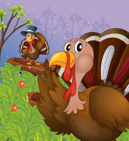 caruncle: Illustration of two turkeys in the forest