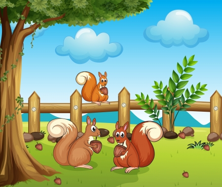 tree nuts: Illustration of a squirrel eating nut and a beautiful landscape