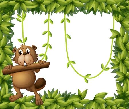 nutria caricatura: Ilustraci�n de un marco de conejo y de la planta en un fondo blanco Vectores