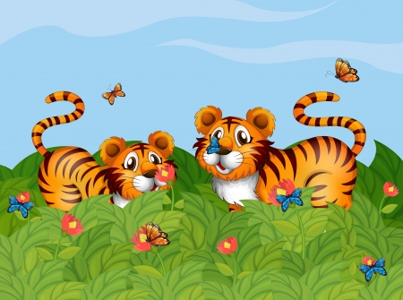 Illustration of two tigers playing in the garden Stock Vector - 17896538