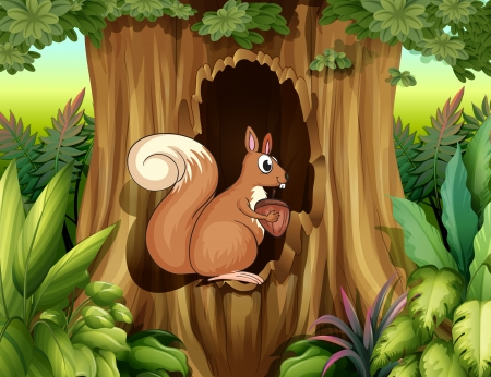 hollow: Illustration of a squirrel in the forest