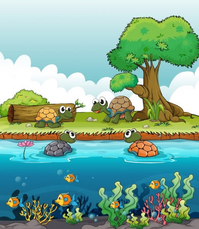 dead fish: Illustration of a river and a smiling turtles