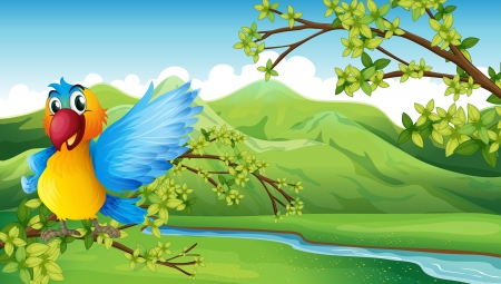 Illustration of a colorful bird across the mountain Vector
