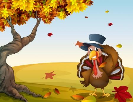 Illustration of a turkey in an autumn scenery Stock Vector - 17896607