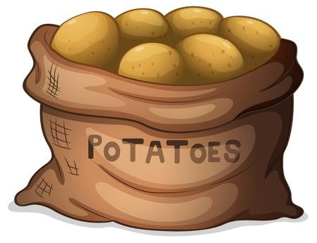 картофель: Иллюстрация мешок с картошкой на белом фоне