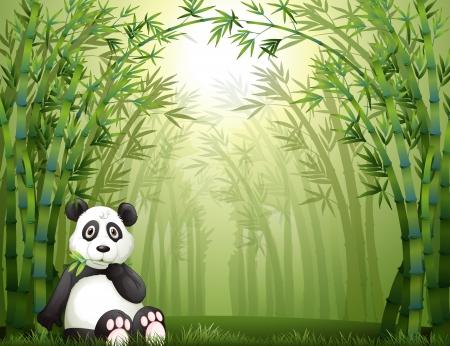 oso panda: Ilustraci�n de un oso panda que se sienta en un bosque de bamb�