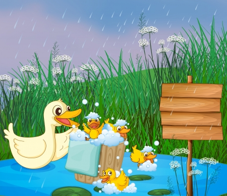 Illustration of a mother duck with her ducklings playing under the rain Stock Vector - 17897902