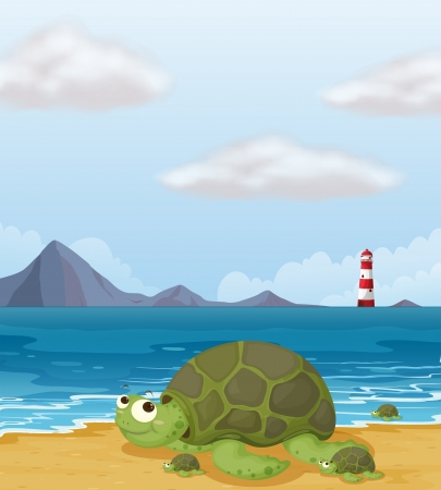Illustration of a turtle in the shore Vector