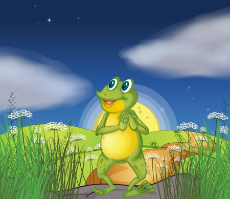 Illustration of a frog looking at the bright star Stock Vector - 17897496