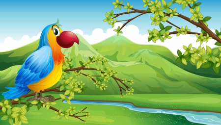 forest clipart: Illustration of a colorful bird near the mountain