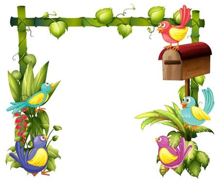 cartoon frame: Illustrazione dei cinque uccelli colorati su uno sfondo bianco