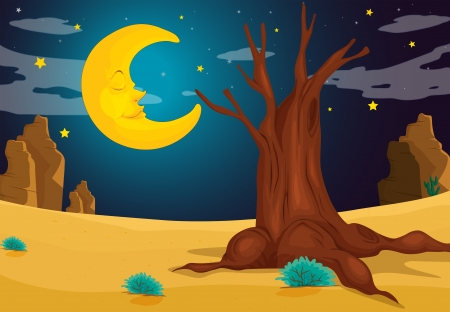 Illustration of a moonlight evening Stock Vector - 17896899