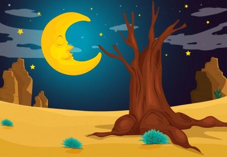 scorching: Illustration of a moonlight evening Illustration