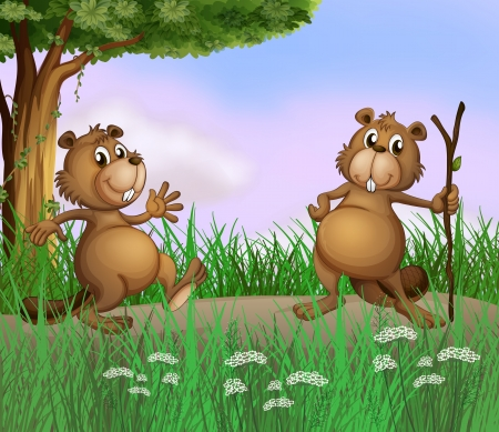 Illustration of the two beavers playing in the forest Vector