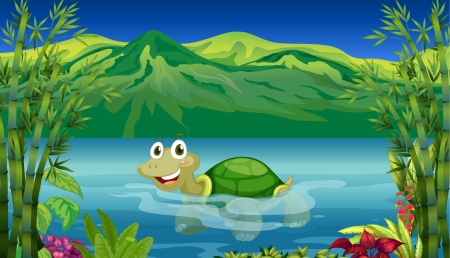 freshwater turtle: Illustration of a turtle in the sea Illustration