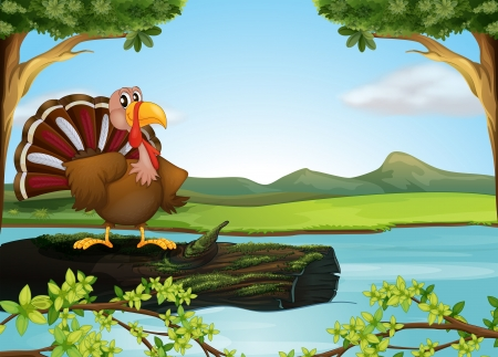 picure: Illustration of a turkey in the river