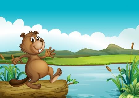 nutria caricatura: Ilustraci�n de un castor por encima de una madera flotante Vectores