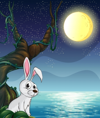 nighttime: Illustration of a rabbit and the bright full moon Illustration