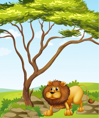picure: Illustration of a lion near a big tree in the hills Illustration