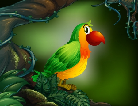 moist: Illustration of a parrot at the rain forest