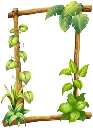 Illustration of a vine plant on a white background