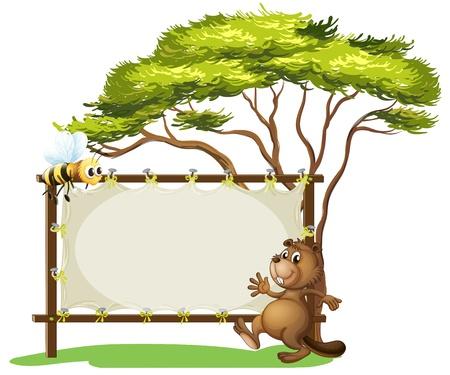 nutria caricatura: Ilustración de un castor al lado de un espacio publicitario vacío sobre un fondo blanco