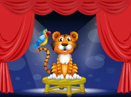 crown tail: Illustration of a tiger and a parrot in the circus Illustration