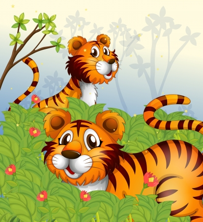 tigers: Illustration of tigers in the woods
