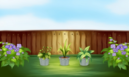 Illustration of three plants in a pot inside the fence Stock Vector - 17821546