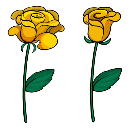 sepal: Illustration of two lovely flowers on a white background Illustration