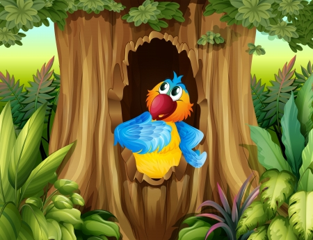birds scenery: Illustration of a parrot inside a tree hollow