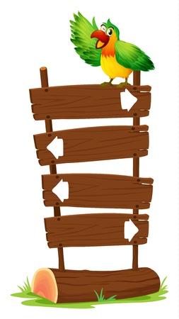 loros verdes: Ilustraci�n de un loro colorido en la parte superior de un letrero de madera sobre un fondo blanco