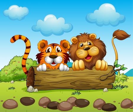 tigre caricatura: Ilustración de un león y un tigre escondido Vectores