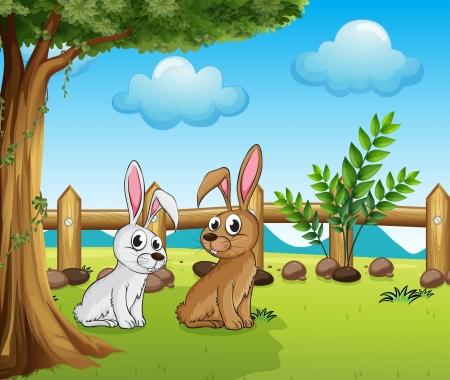 conejo caricatura: Ilustración de dos conejitos en el interior de la valla