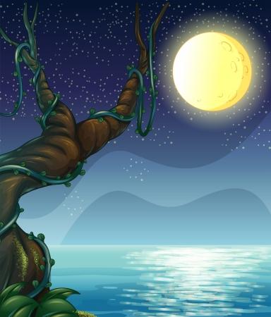 arboles de caricatura: Ilustraci�n de una noche llena de estrellas