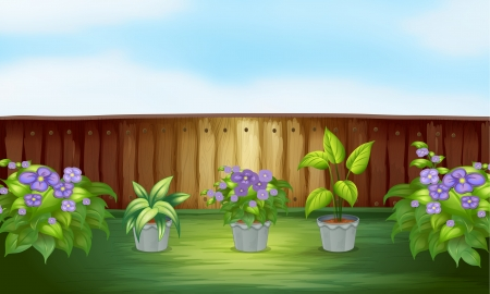 Illustration of plants in the backyard Vector