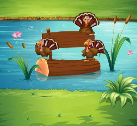 turkeys: Illustration of the turkeys and the wooden signboard