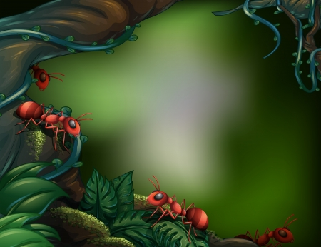 Illustration of the ants at the rain forest Vector