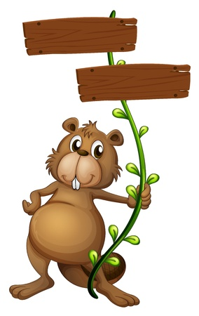 Illustration of a beaver holding a vine plant with signboards on a white background Stock Vector - 17867675