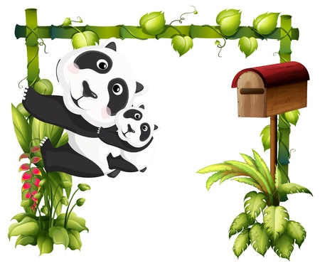 animal frame: Illustration of a mother panda together with her baby on a white background