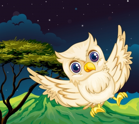 nocturnal: Illustration of a nocturnal creature Illustration