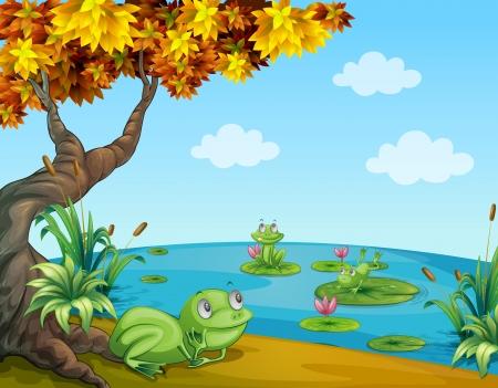 Illustratie van drie groene kikkers in de vijver Stock Illustratie