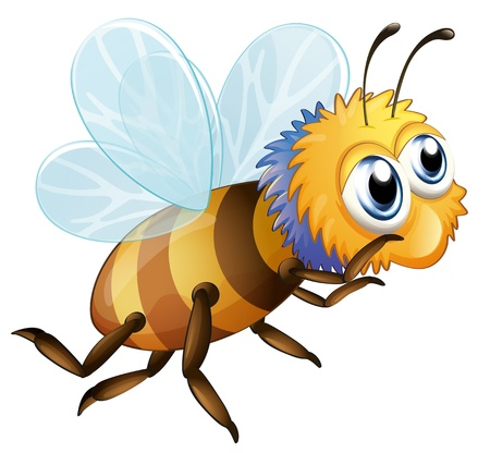 Illustration of a bee on a white background Vector