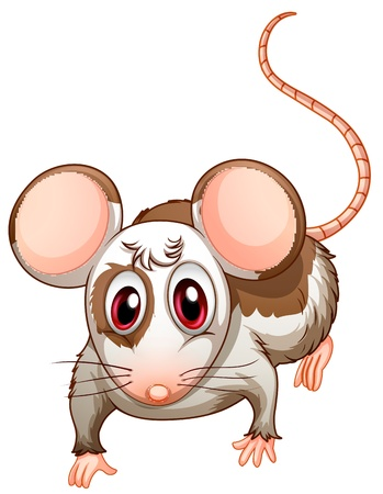 crus: Illustration of a mouse on a white background