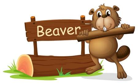 castor: Ilustración de un castor al lado del letrero de madera sobre un fondo blanco Vectores