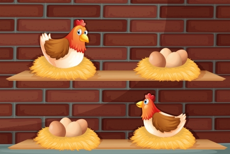 wooden shelves: Illustration of two hens laying eggs at the wooden shelves
