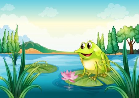 tree frogs: Ilustraci�n de una rana en el r�o