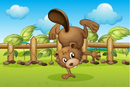 nutria caricatura: Ilustración de un castor en el interior de la valla de madera Vectores