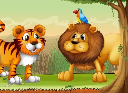 tigre caricatura: Ilustración de un tigre, un león y un loro Vectores