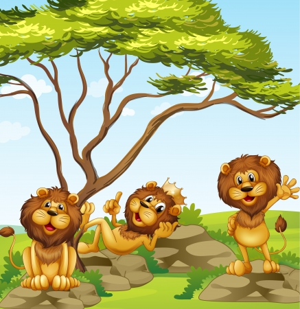 crown tail: Illustration of a group of lions Illustration